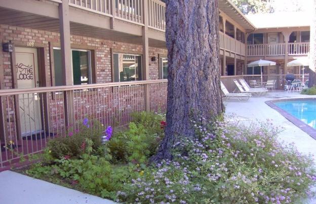 Lodge at Lake Tahoe